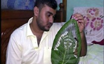 This Indian artist is turning leaves into an art