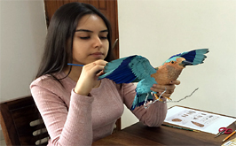 A Self-Taught Indian Artist Sculpts Intricate Birds From Paper and Wire